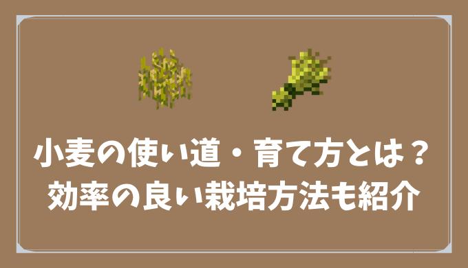 【マイクラ】小麦の使い道・育て方とは?/効率の良い栽培方法も紹介